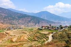Bhutan-photo-tour-Karen-Lucas-19