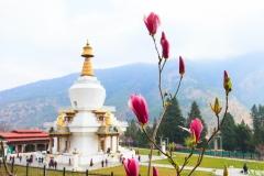 Bhutan-photo-tour-Karen-Lucas-20