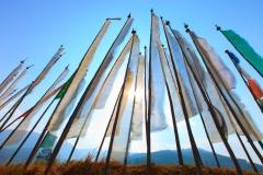 Bhutan-photo-tour-Karen-Lucas-21
