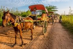Bagan Horse Cart by Simona Craparotta
